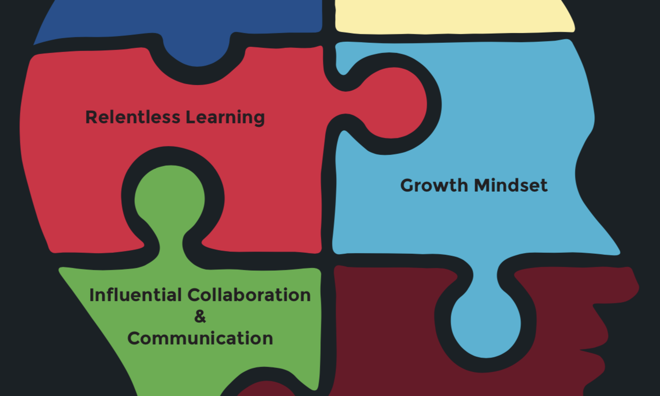graphic of a human head with puzzle pieces representing the social impact skillsets