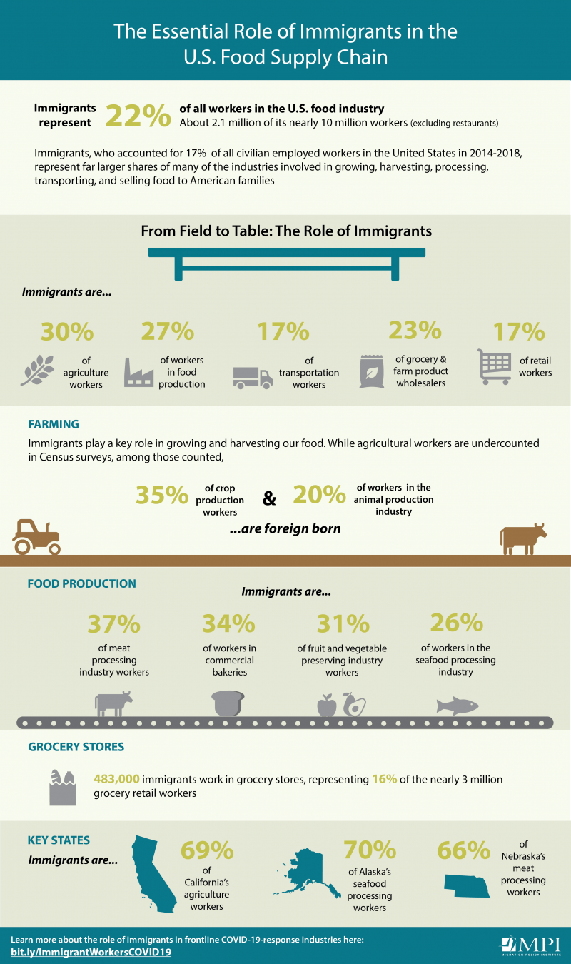 infographic of The Essential Role of Immigrants in the U.S. Food Supply Chain